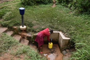 The Water Project: Givudemesi Primary School -  Agnes Collects Water At The Spring