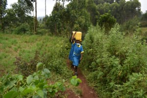 The Water Project: Gimomoi Primary School -  Carrying Water To School From An Open Source