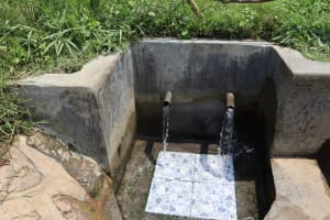 The Water Project: Emurumba Community, Makokha Spring -  Clean Water Flows
