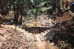The Water Project: Shihome Community, Peter Majoni Spring -  Splash From A Thrown Rock In The Backfilling