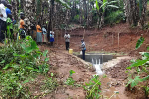 The Water Project: Shihome Community, Peter Majoni Spring -  Spring Maintenance Training