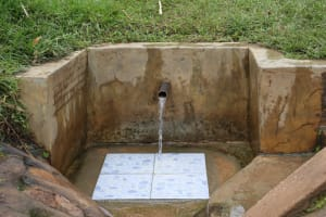 The Water Project: Burachu B Community, Namukhuvichi Spring -  Clean Water Flows