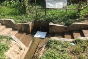 The Water Project: Rosterman Community, Lishenga Spring -  Water Flowing