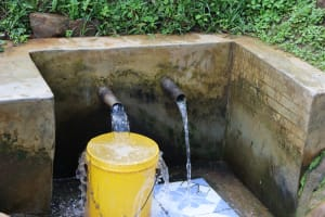 The Water Project: Buhayi Community, Nasichundukha Spring -  Clean Water Flows