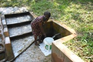 The Water Project: Bumira Community, Madegwa Spring -  Ann Fetching Water