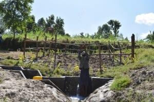 The Water Project: Machemo Community, Boaz Mukulo Spring -  Woman Splashing Water