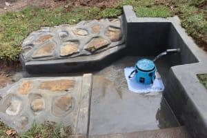 The Water Project: Mahira Community, Mukalama Spring -  Water Flowing