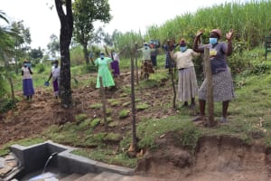 The Water Project: Mahira Community, Mukalama Spring -  Celebrating The Spring