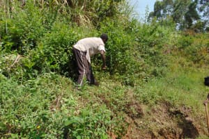 The Water Project: Mukhungula Community, Mulongo Spring -  Site Clearance