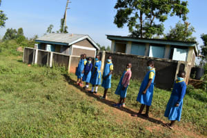 The Water Project: Ibokolo Primary School -  Girls In Line For Latrines