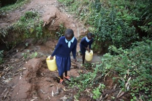 The Water Project: Kabinjari Primary School -  Carrying Water From An Open Source