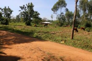 The Water Project: St. Benedict Emutetemo Primary School -  Surrounding Area