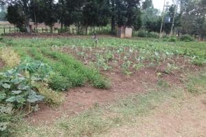 The Water Project: Mungabira Primary School -  Surrounding Area
