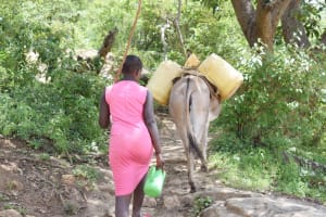 The Water Project: Nduumoni Community C -  Walking Home With Water