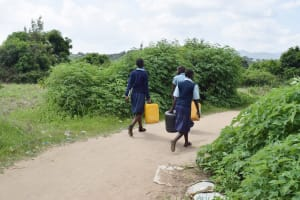The Water Project: Mbiuni Primary School -  Students Carrying Water