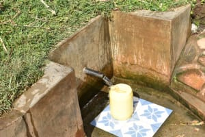 The Water Project: Ataku Community, Ngache Spring -  A Year Later Clean Water Still Flowing