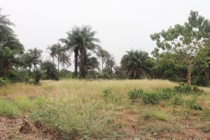The Water Project: DEC Kitonki Primary School -  School Area