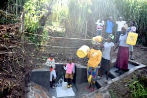 The Water Project: Musango Commnuity, Wabuti Spring -  Celebrating The Protected Spring