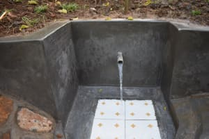 The Water Project: Musango Commnuity, Wabuti Spring -  Clean Water Flowing