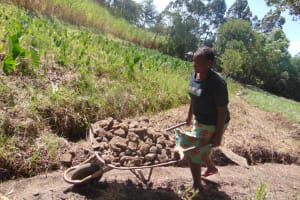 The Water Project: Makhwabuyu Community, Sayia Spring -  Woman Delivers Stones To Construction Site
