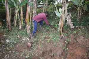 The Water Project: Mukhonje B Community, Peter Yakhama Spring -  Site Clearance
