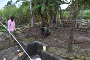 The Water Project: Kalenda A Community, Moro Spring -  Planting Grass