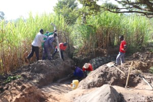 The Water Project: Luyeshe Community, Khausi Spring -  Raising The Poles For Fencing