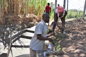 The Water Project: Luyeshe Community, Khausi Spring -  Planting Grass Over The Protected Area
