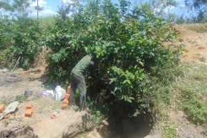The Water Project: Indulusia Community, Osanya Spring -  Site Clearance