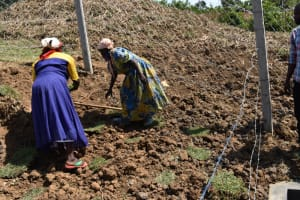 The Water Project: Indulusia Community, Osanya Spring -  Grass Planting Inside The Fence