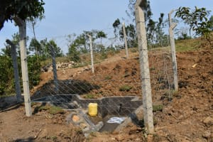 The Water Project: Indulusia Community, Osanya Spring -  Complete Fenced Spring With Clean Flowing Water