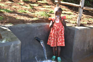 The Water Project: Mukhonje B Community, Peter Yakhama Spring -  Drinking Clean Water