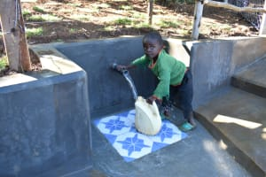 The Water Project: Mukhonje B Community, Peter Yakhama Spring -  Young Ben Wanted To Try Fetching Too