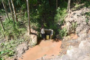 The Water Project: Shivagala Commmunity, Wekoye Spring -  Collecting Water
