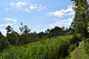 The Water Project: Shivagala Commmunity, Wekoye Spring -  Community Landscape