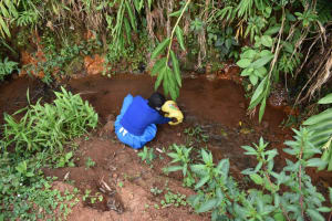 The Water Project: Itabalia Primary School -  Fetching Water At The Stream