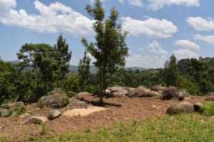 The Water Project: Gimariani Primary School -  Community Landscape