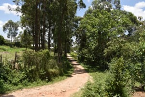 The Water Project: Gimariani Primary School -  Path To The School
