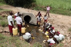 The Water Project: Muriola Primary School -  Fetching Water From The Stream