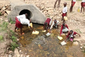 The Water Project: Muriola Primary School -  Students At The Stream