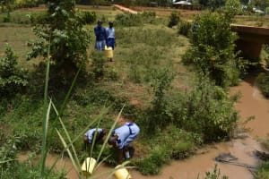 The Water Project: Ebukuya Special School for the Deaf -  Collecting Water