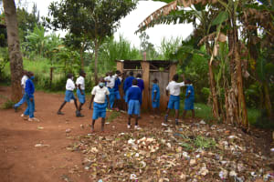 The Water Project: Friends Mudindi Village Primary School -  Boys At Their Latrines