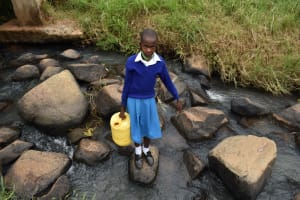 The Water Project: Friends Mudindi Village Primary School -  Cheryl Fetching Water From The Stream