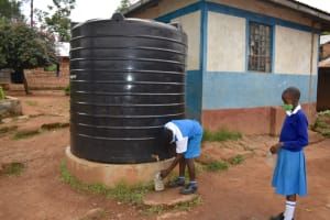 The Water Project: Friends Mudindi Village Primary School -  Collecting Water From Plastic Rain Tank