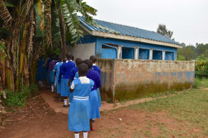 The Water Project: Friends Mudindi Village Primary School -  Girls Lining Up At The Latrines