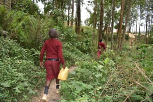The Water Project: Kapkeruge Primary School -  Students Carrying Water