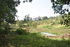 The Water Project: Emusaka Community, Manasses Spring -  Landscape