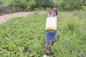 The Water Project: Nzimba Community B -  Carrying Water