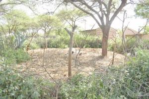 The Water Project: Mbitini Community C -  Animal Pen