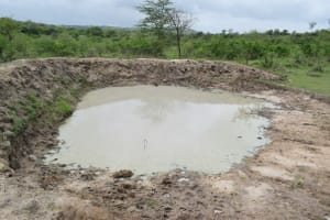 The Water Project: Yumbani Community B -  Open Water Source